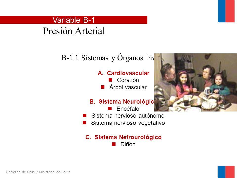 Gobierno de Chile / Ministerio de Salud B-1.1 Sistemas y Órganos involucrados A. Cardiovascular Corazón Árbol vascular B. Sistema Neurológico Encéfalo