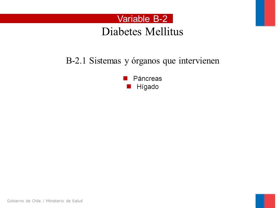Gobierno de Chile / Ministerio de Salud Variable B-2 Diabetes Mellitus B-2.1 Sistemas y órganos que intervienen Páncreas Hígado