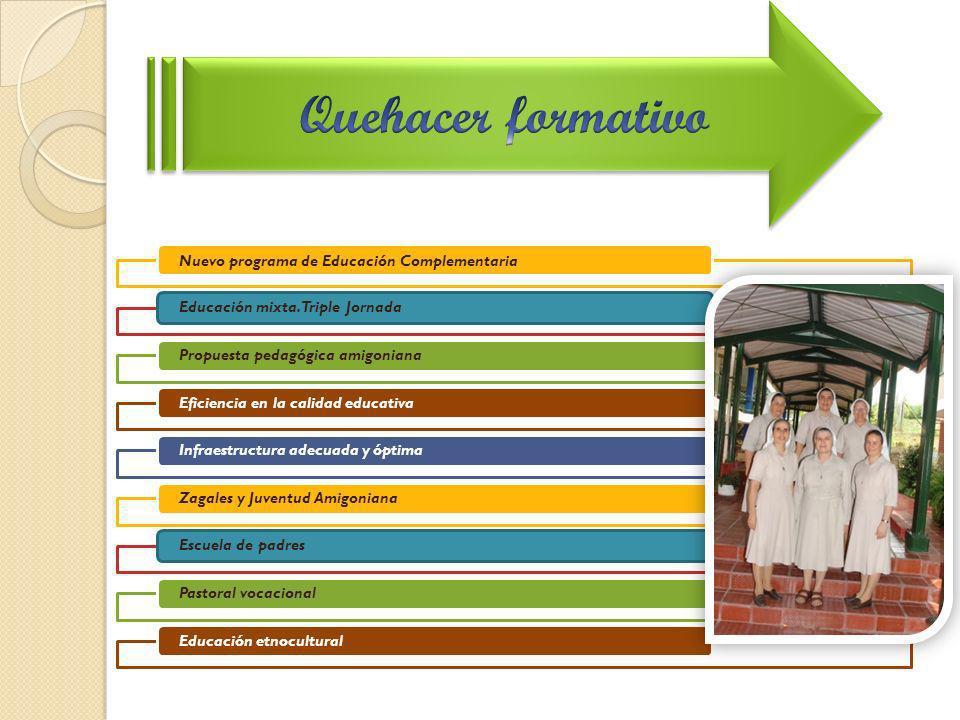 Nuevo programa de Educación Complementaria Educación mixta. Triple JornadaPropuesta pedagógica amigonianaEficiencia en la calidad educativaInfraestruc