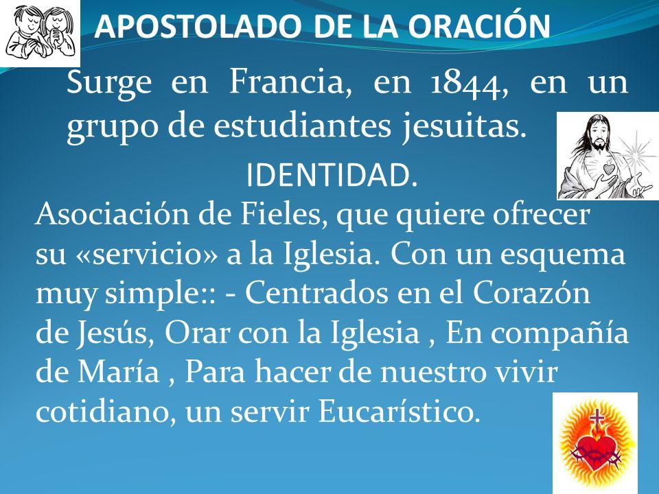 ORDEN SEGLAR SIERVOS DE MARÍA IDENTIDAD. La Orden Seglar de los Siervos de María está formada, pues, por hombres y mujeres que viven en el mundo su vi