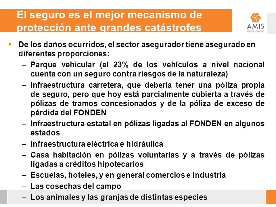 De los daños ocurridos, el sector asegurador tiene asegurado en diferentes proporciones: –Parque vehicular (el 23% de los vehículos a nivel nacional c