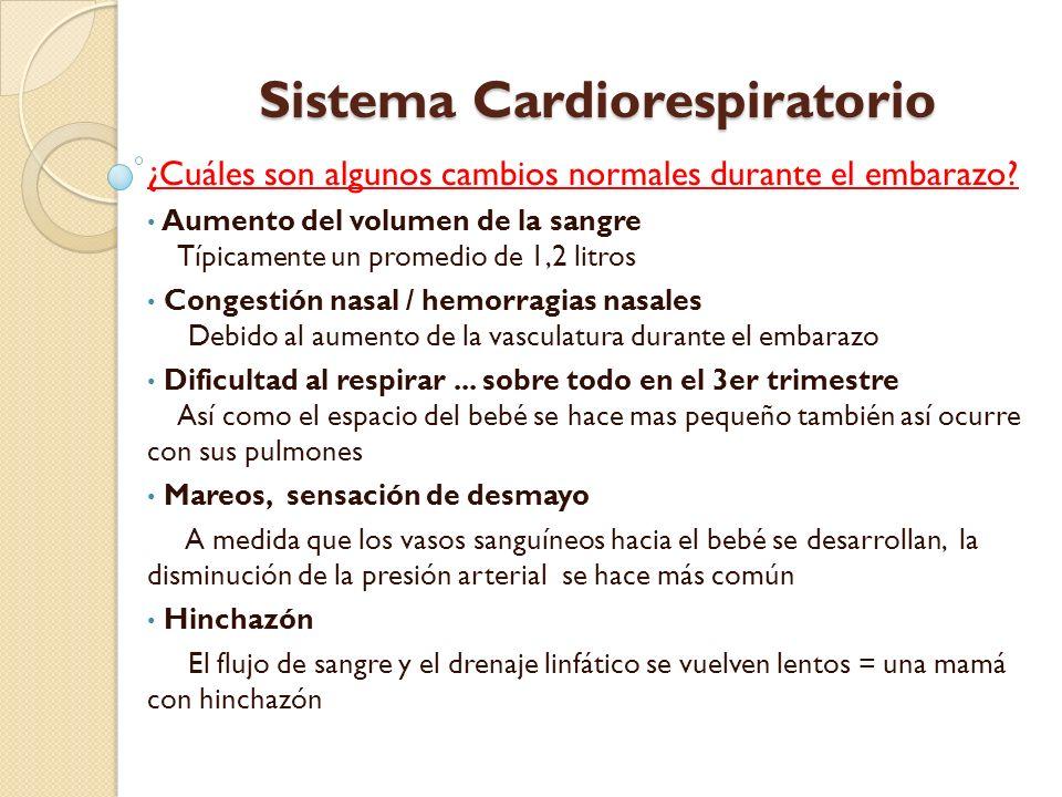 Sistema Cardiorespiratorio ¿Qué puede esperar.