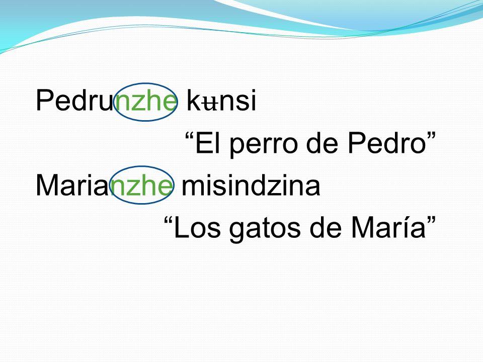 Pedrunzhe k ʉ nsi El perro de Pedro Marianzhe misindzina Los gatos de María