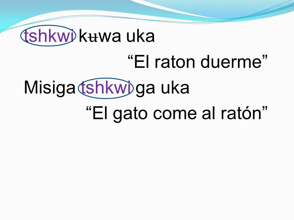 tshkwi k ʉ wa uka El raton duerme Misiga tshkwi ga uka El gato come al ratón