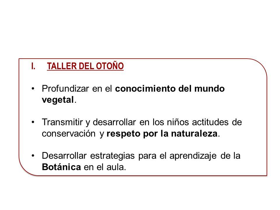 I.TALLER DEL OTOÑO Profundizar en el conocimiento del mundo vegetal. Transmitir y desarrollar en los niños actitudes de conservación y respeto por la