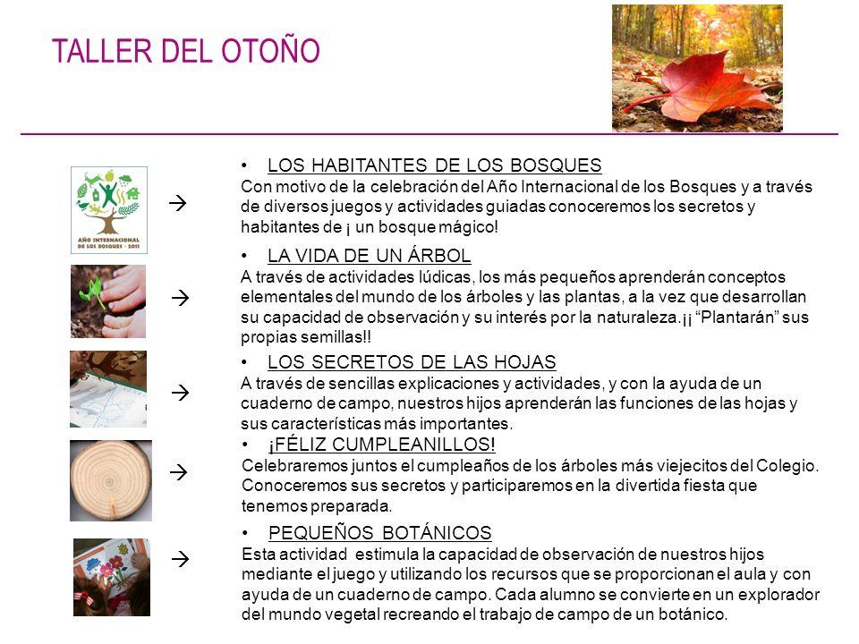 TALLER DEL OTOÑO LOS HABITANTES DE LOS BOSQUES Con motivo de la celebración del Año Internacional de los Bosques y a través de diversos juegos y activ