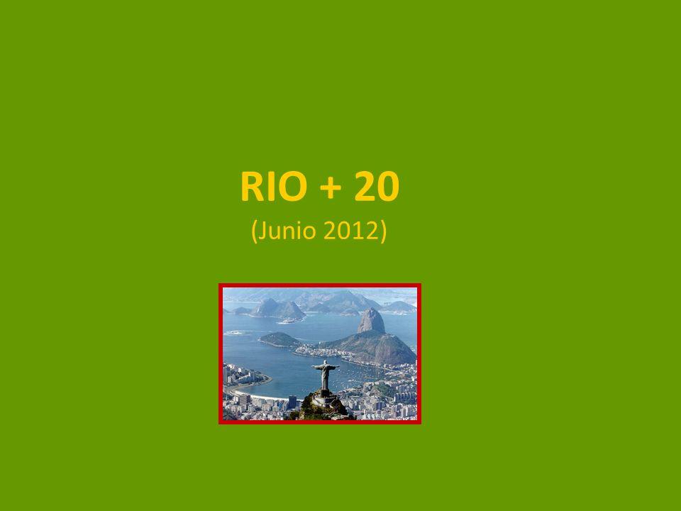 RIO + 20 (Junio 2012)