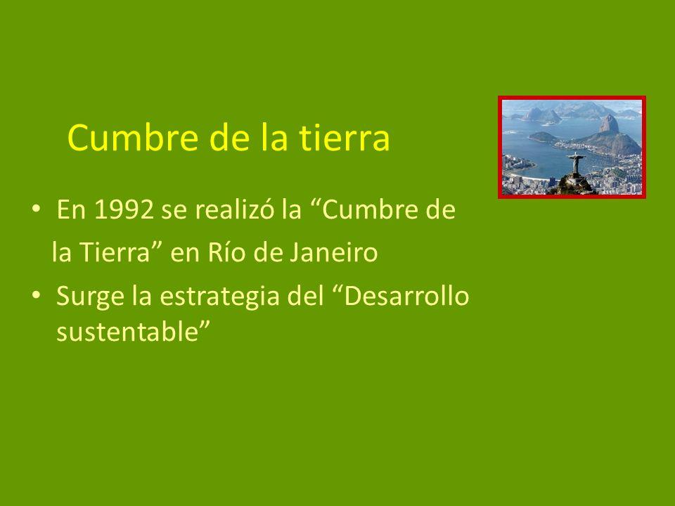 Cumbre de la tierra En 1992 se realizó la Cumbre de la Tierra en Río de Janeiro Surge la estrategia del Desarrollo sustentable