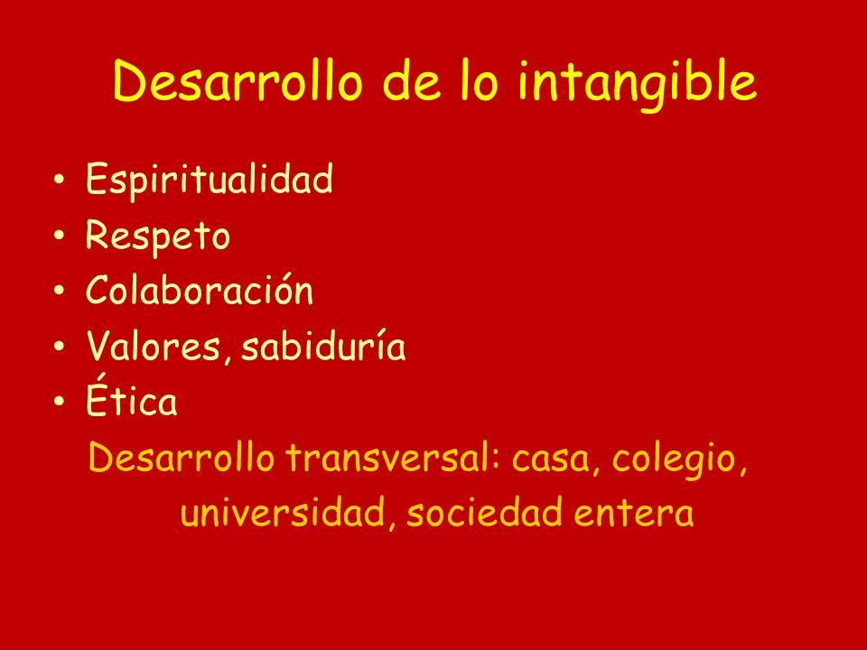 Desarrollo de lo intangible Espiritualidad Respeto Colaboración Valores, sabiduría Ética Desarrollo transversal: casa, colegio, universidad, sociedad