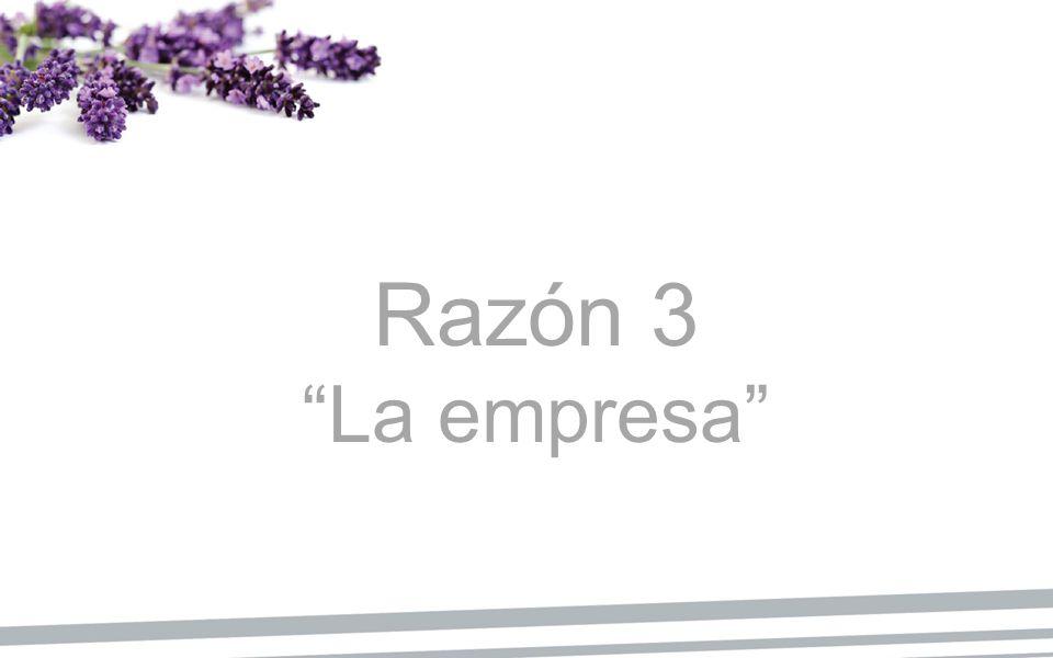 Razón 3 La empresa
