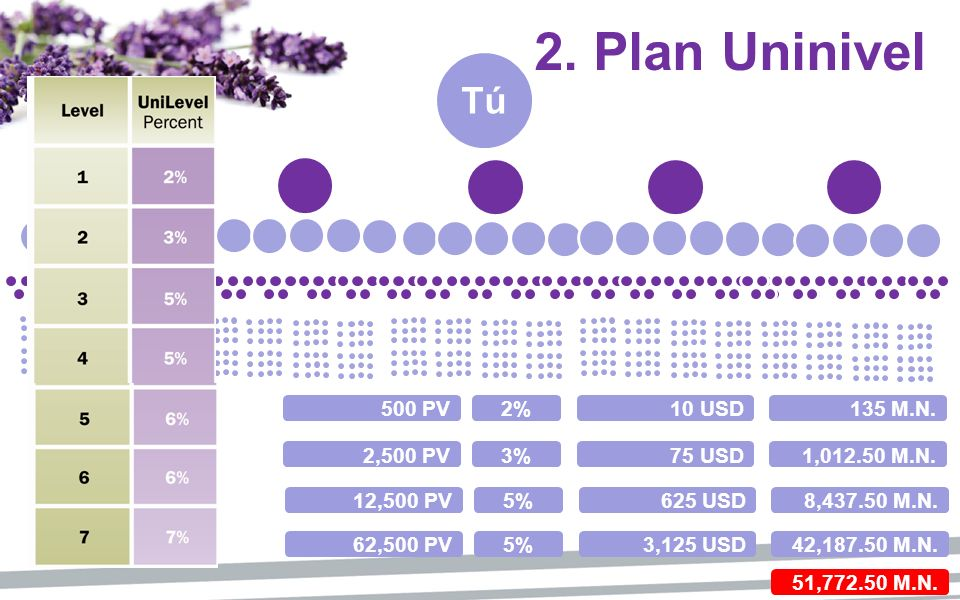 Tú 2. Plan Uninivel 500 PV2%10 USD135 M.N. 2,500 PV3%75 USD1,012.50 M.N. 12,500 PV5%625 USD8,437.50 M.N. 62,500 PV5%3,125 USD42,187.50 M.N. 51,772.50