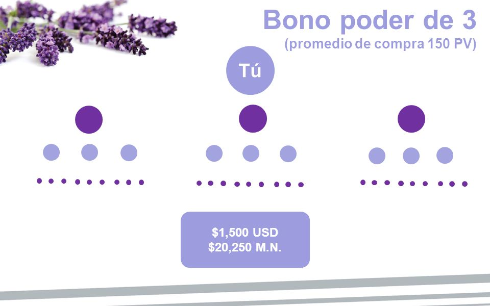 Tú Bono poder de 3 (promedio de compra 150 PV) $50 USD $675 M.N. $250 USD $3,375 M.N. $1,500 USD $20,250 M.N.