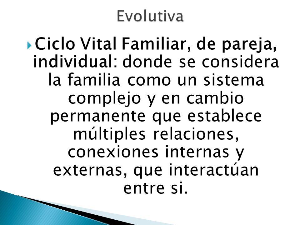 Ciclo Vital Familiar, de pareja, individual: donde se considera la familia como un sistema complejo y en cambio permanente que establece múltiples rel