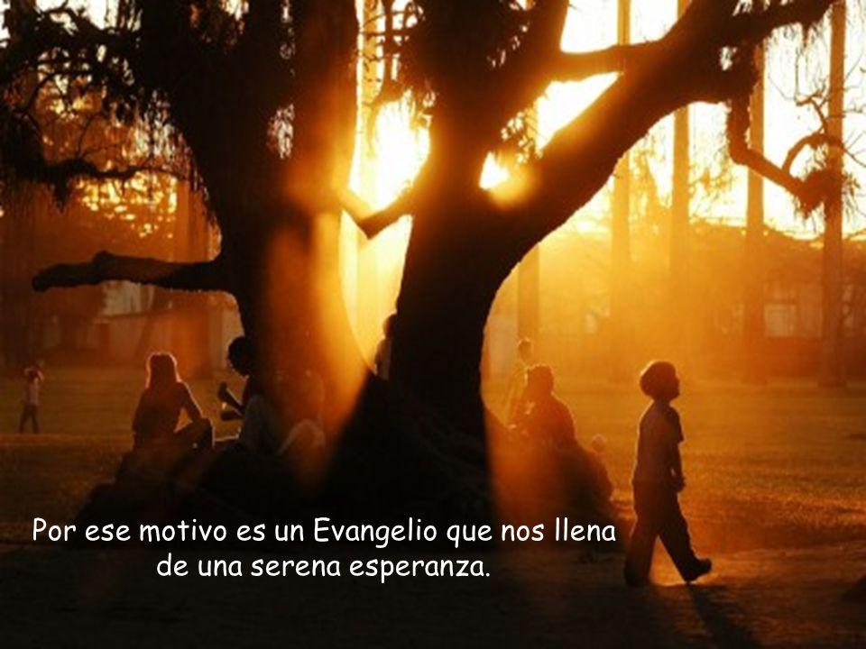 y todo lo que hace y propone no tiene otro objeto que nuestro regreso al hogar suyo, nuestra salvación.