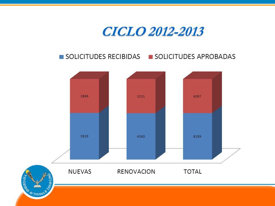 CICLO2012-2013 CICLO 2012-2013
