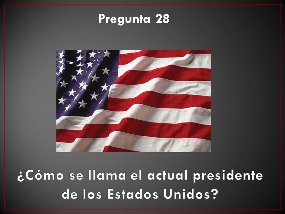 Pregunta 28