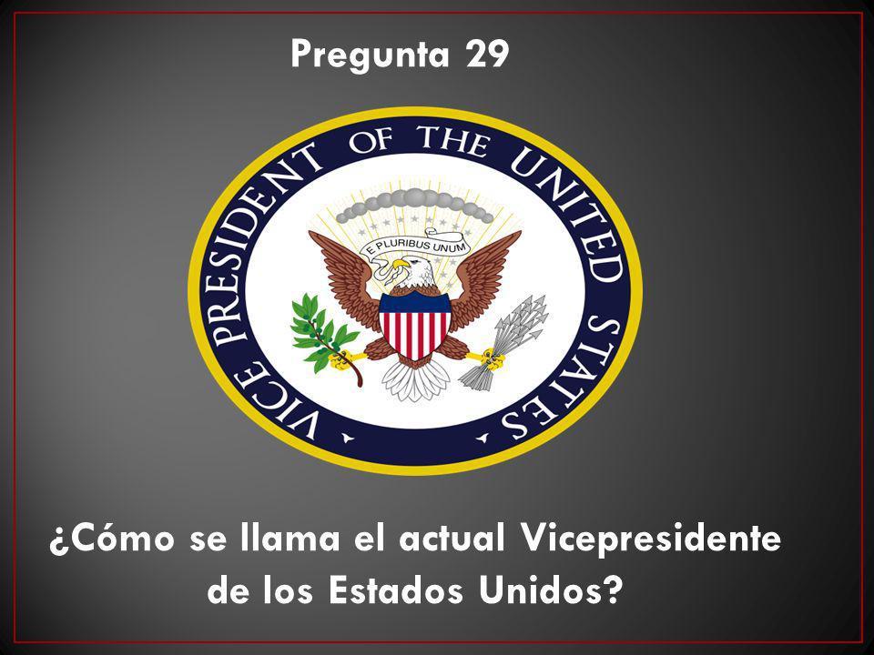 ¿Cómo se llama el actual Vicepresidente de los Estados Unidos? Pregunta 29