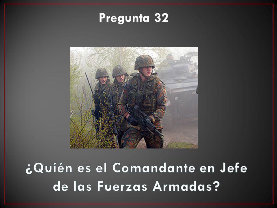Pregunta 32