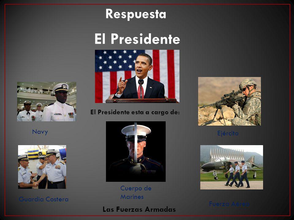 El Presidente esta a cargo de: Navy Cuerpo de Marines Guardia Costera Ejército Fuerza Aérea Las Fuerzas Armadas El Presidente Respuesta