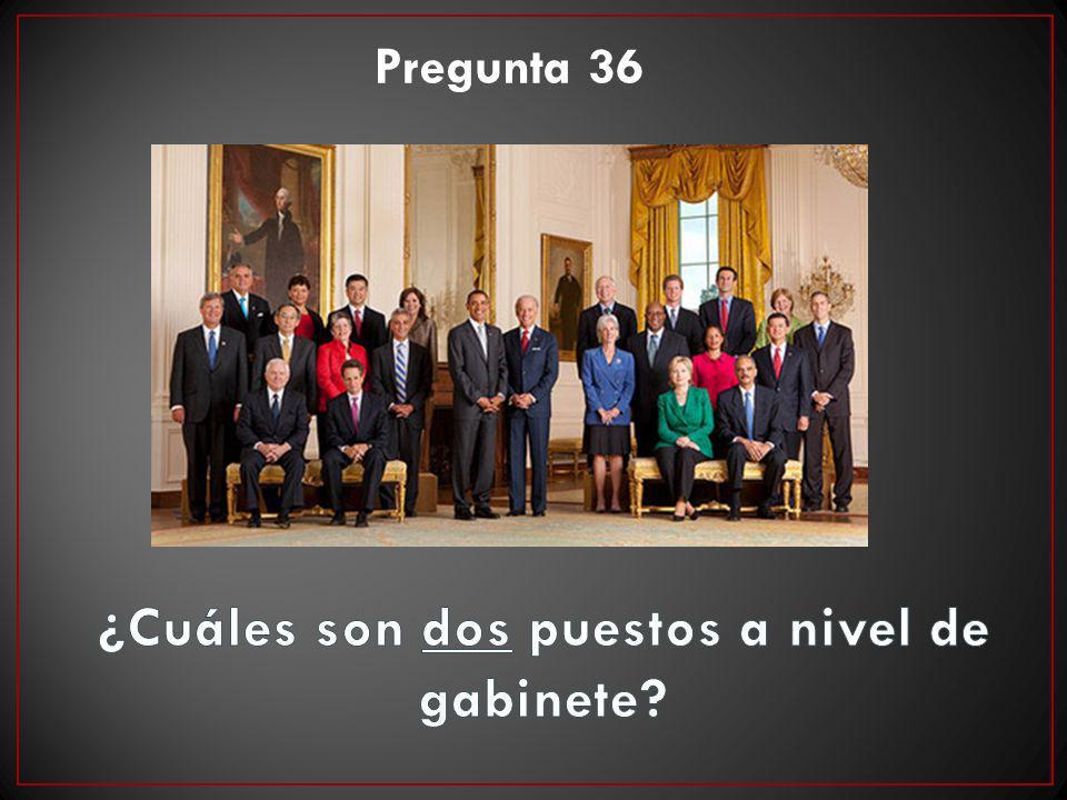 Pregunta 36