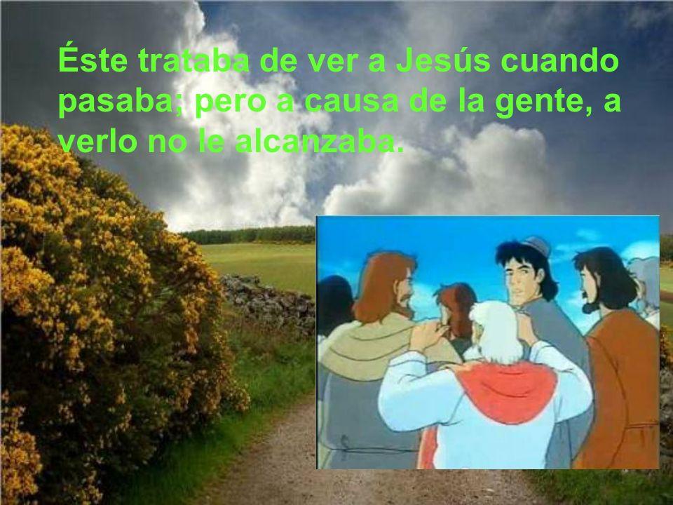 Jesús marchó a Jericó donde vivía Zaqueo, hombre rico y publicano, de estatura muy pequeño.