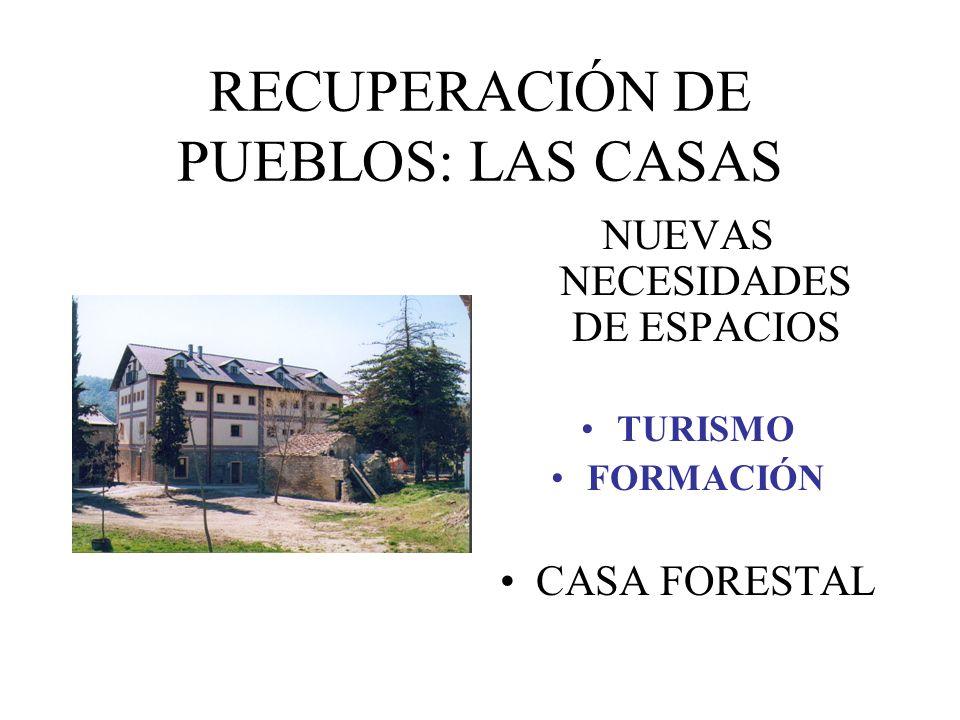 RECUPERACIÓN DE PUEBLOS: LAS CASAS NUEVAS NECESIDADES DE ESPACIOS TURISMO FORMACIÓN CASA FORESTAL