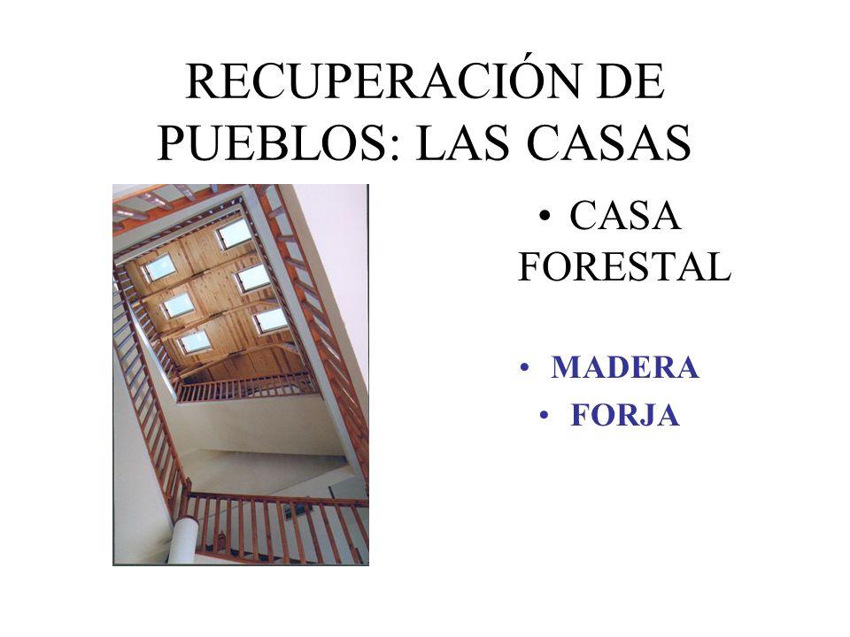 RECUPERACIÓN DE PUEBLOS: LAS CASAS CASA FORESTAL MADERA FORJA