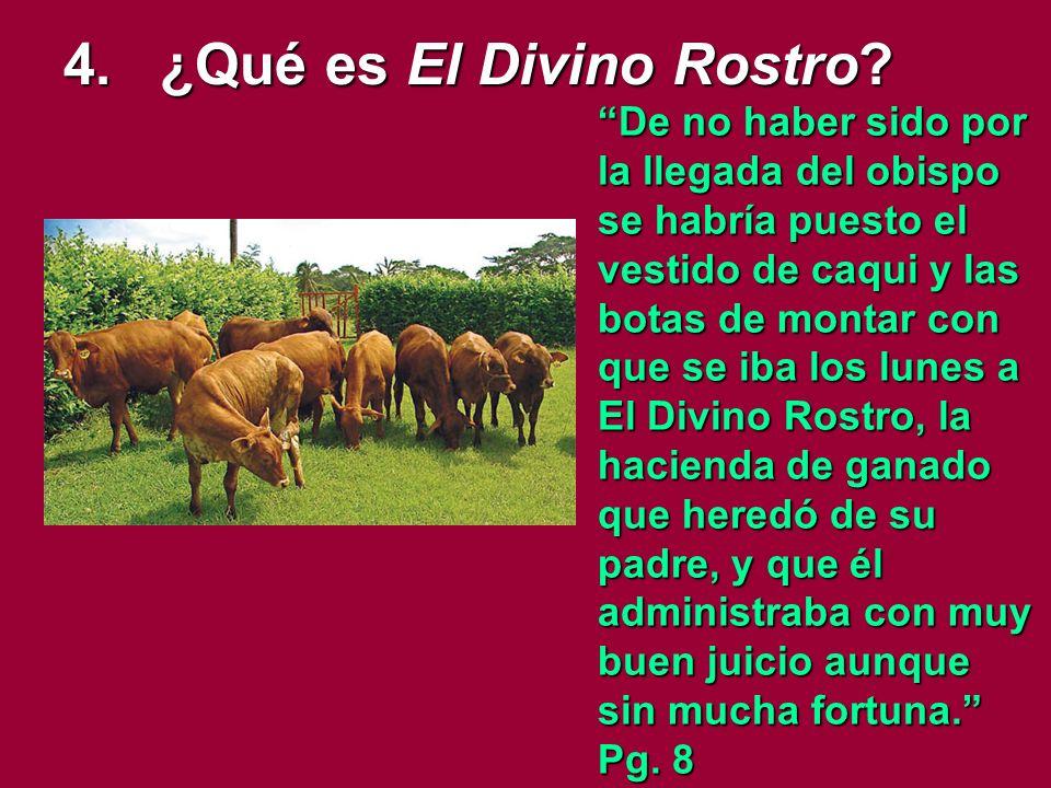 4.¿Qué es El Divino Rostro.