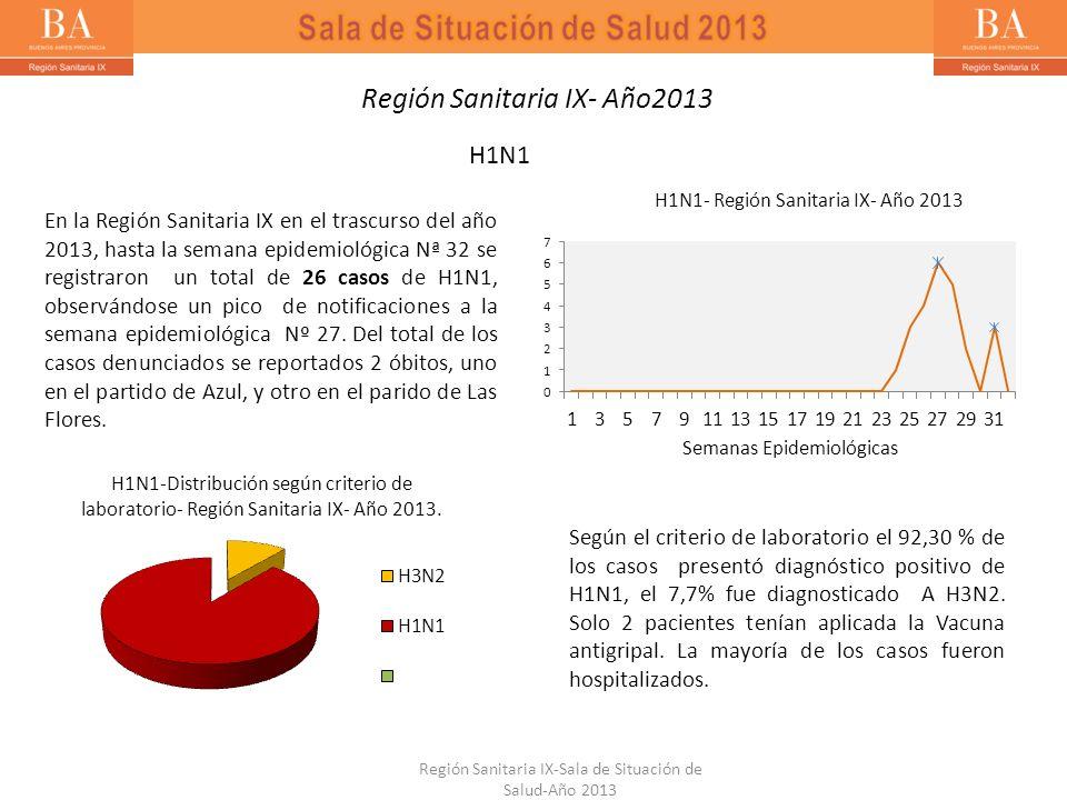 Región Sanitaria IX-Sala de Situación de Salud-Año 2013 Región Sanitaria IX- Año2013 H1N1 En la Región Sanitaria IX en el trascurso del año 2013, hast