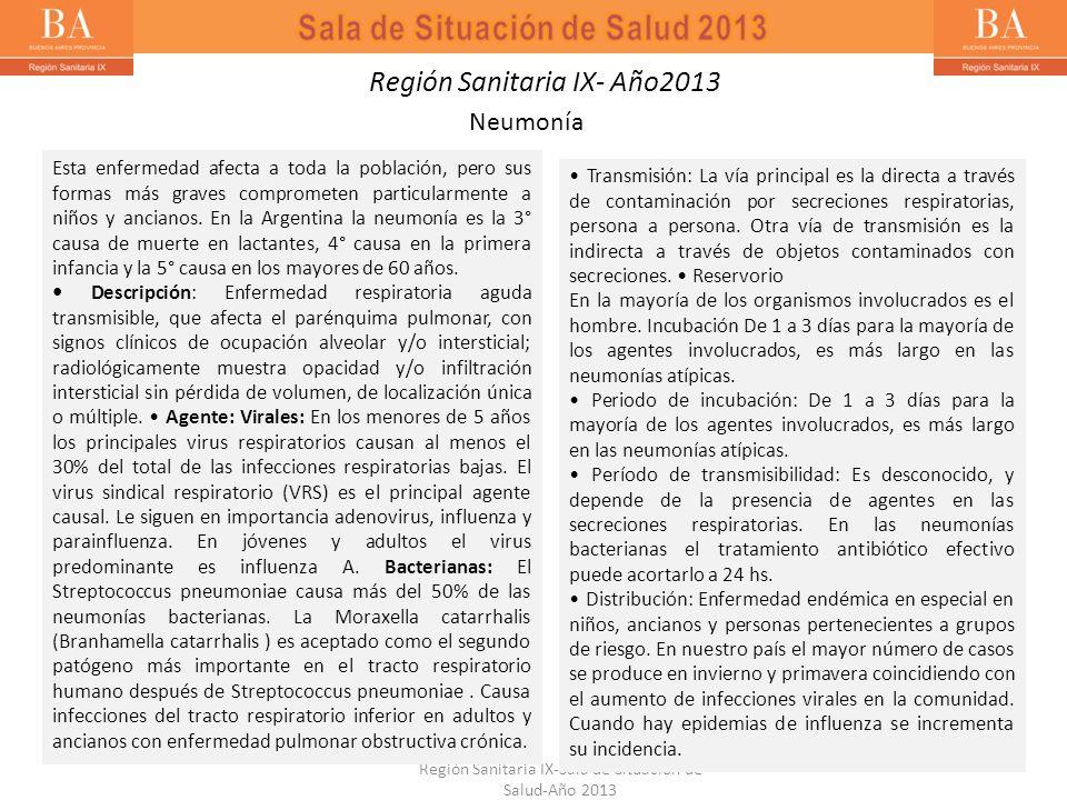 Región Sanitaria IX-Sala de Situación de Salud-Año 2013 Región Sanitaria IX- Año2013 Neumonía Esta enfermedad afecta a toda la población, pero sus for