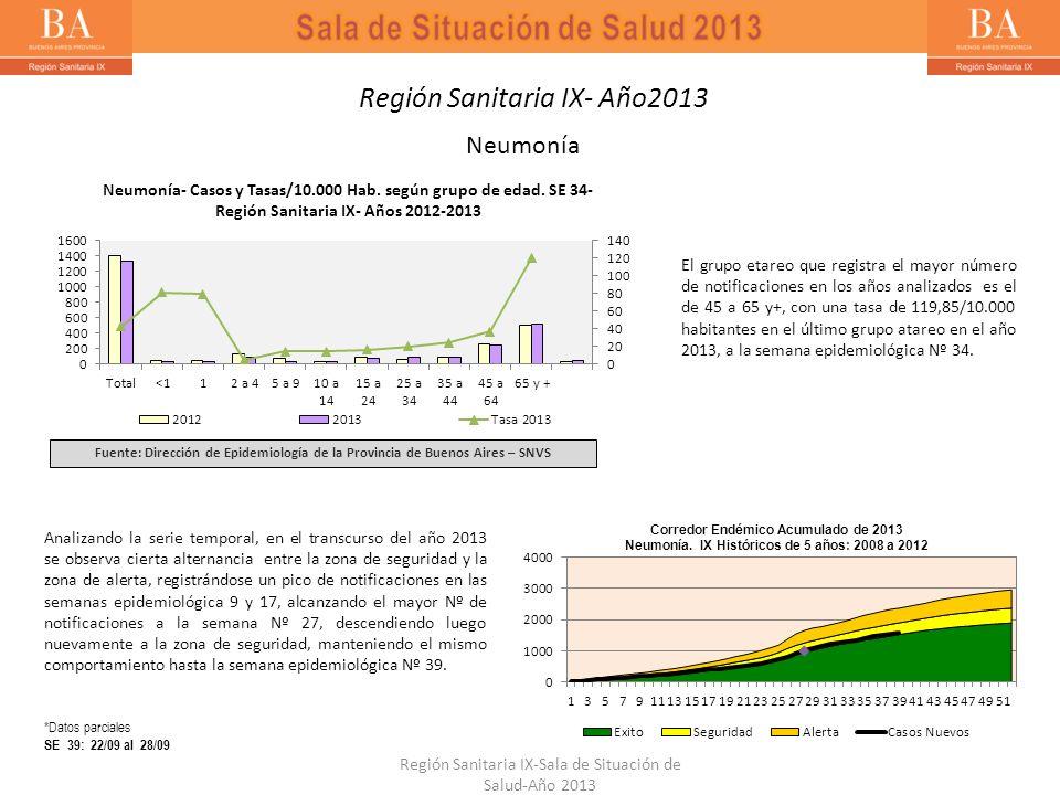 Neumonía Neumonía- Casos y Tasas/10.000 Hab. según grupo de edad. SE 34- Región Sanitaria IX- Años 2012-2013 Fuente: Dirección de Epidemiología de la