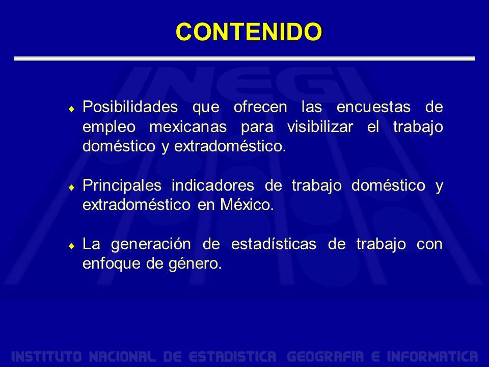 Posibilidades que ofrecen las encuestas de empleo mexicanas para visibilizar el trabajo doméstico y extradoméstico.
