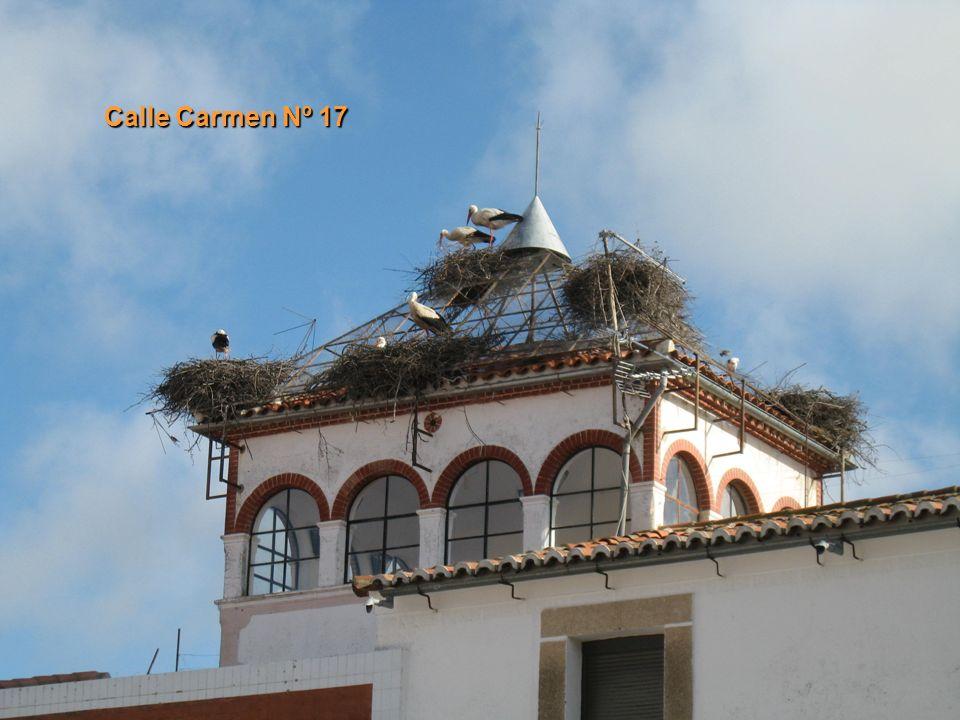 Calle Carmen Nº 17