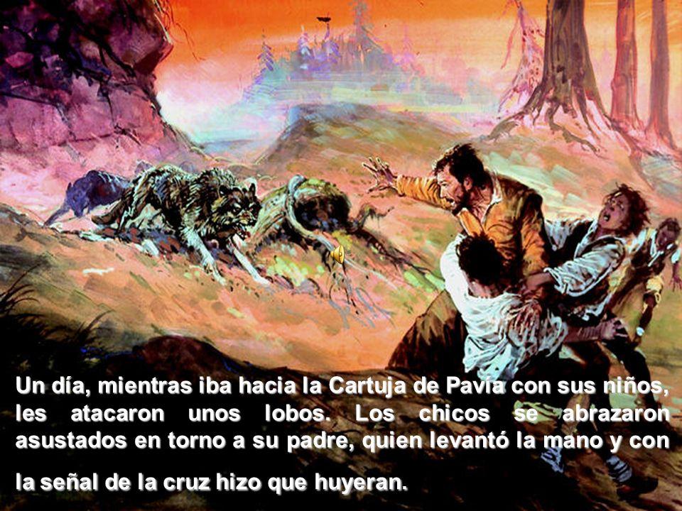 Un día, mientras iba hacia la Cartuja de Pavía con sus niños, les atacaron unos lobos.