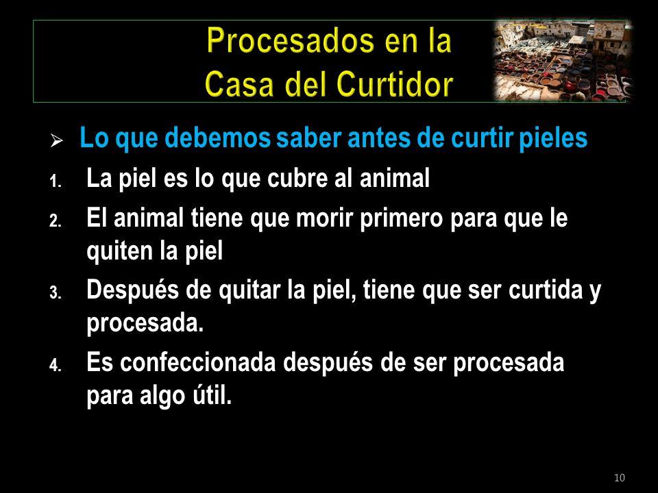 10 Lo que debemos saber antes de curtir pieles 1. La piel es lo que cubre al animal 2. El animal tiene que morir primero para que le quiten la piel 3.