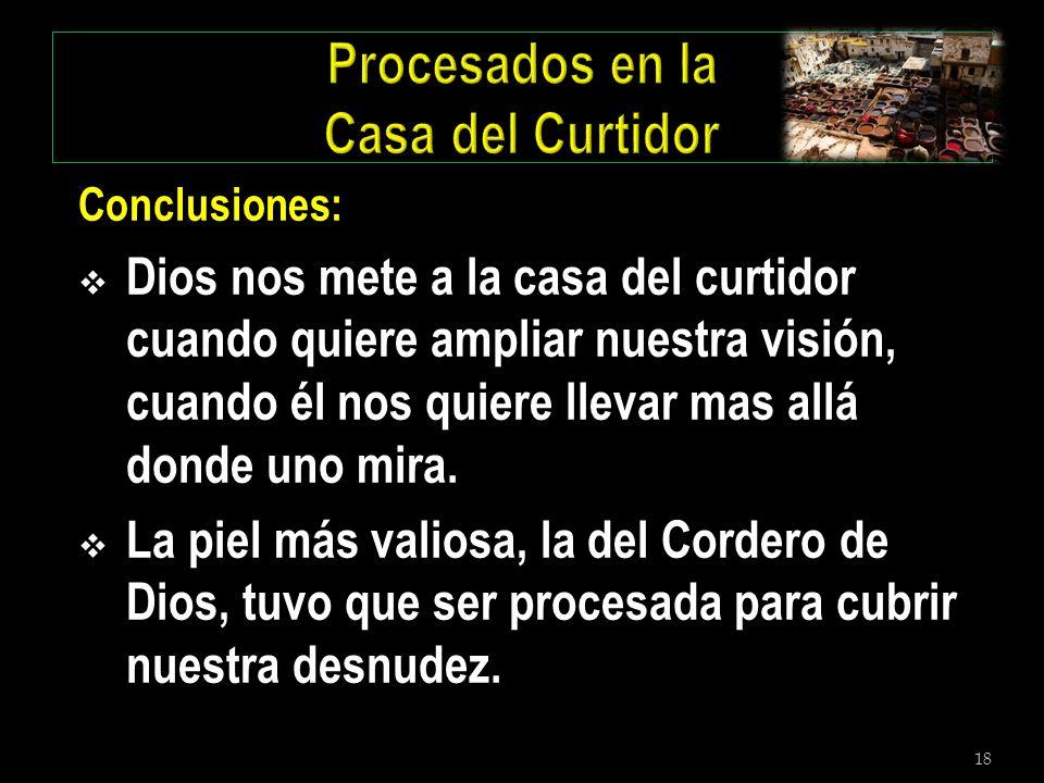 18 Conclusiones: Dios nos mete a la casa del curtidor cuando quiere ampliar nuestra visión, cuando él nos quiere llevar mas allá donde uno mira. La pi
