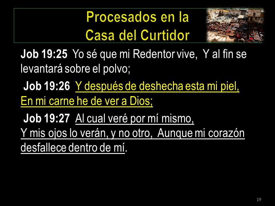 19 Job 19:25 Yo sé que mi Redentor vive, Y al fin se levantará sobre el polvo; Job 19:26 Y después de deshecha esta mi piel, En mi carne he de ver a D