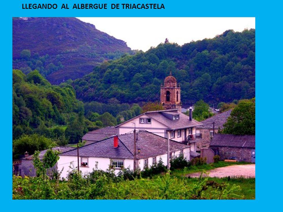 LLEGANDO AL ALBERGUE DE TRIACASTELA