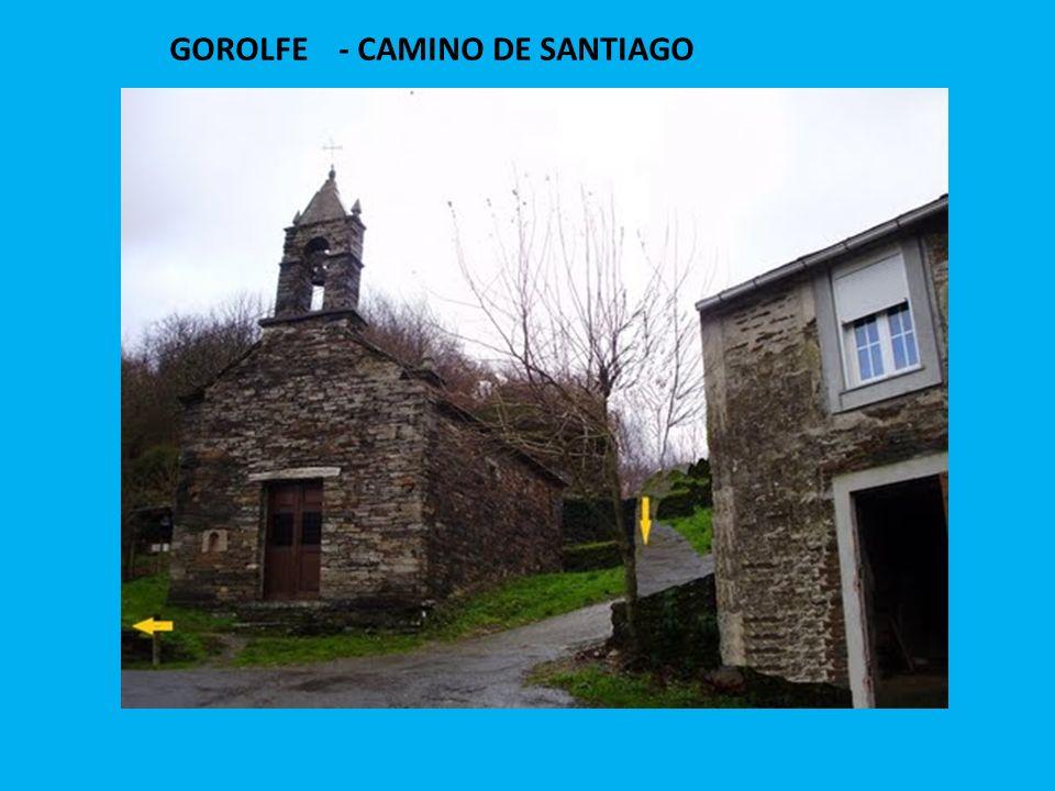 GOROLFE - CAMINO DE SANTIAGO