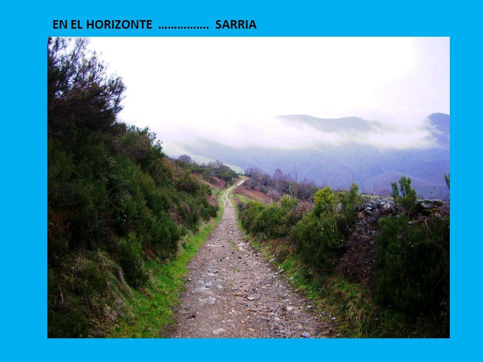 EN EL HORIZONTE ……………. SARRIA