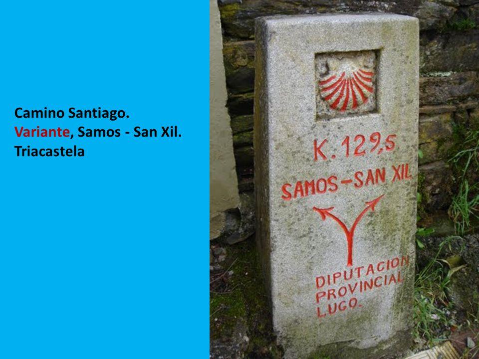 Camino Santiago. Variante, Samos - San Xil. Triacastela