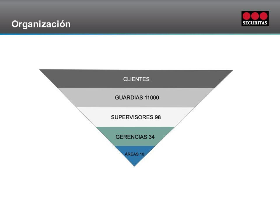 Grid Organización