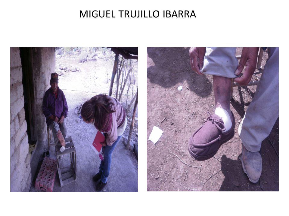 MIGUEL TRUJILLO IBARRA