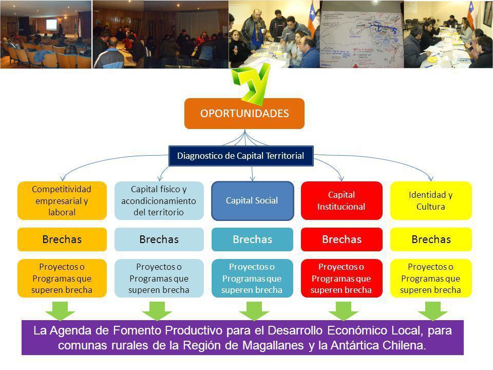 Competitividad empresarial y laboral Capital físico y acondicionamiento del territorio Capital Social Capital Institucional Identidad y Cultura Diagno