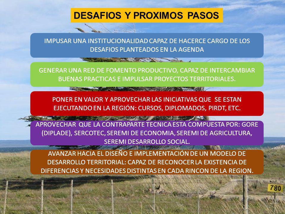 Conclusiones Preliminares..(ii) DESAFIOS Y PROXIMOS PASOS IMPUSAR UNA INSTITUCIONALIDAD CAPAZ DE HACERCE CARGO DE LOS DESAFIOS PLANTEADOS EN LA AGENDA