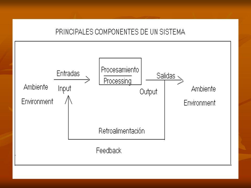 a) INPUT O ENTRADA : constituyen todos los insumos que ingresan al sistema productivo, para que el sistema comience a funcionar.