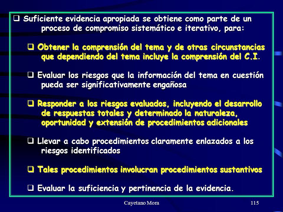 Cayetano Mora115 Suficiente evidencia apropiada se obtiene como parte de un proceso de compromiso sistemático e iterativo, para: Suficiente evidencia apropiada se obtiene como parte de un proceso de compromiso sistemático e iterativo, para: Obtener la comprensión del tema y de otras circunstancias que dependiendo del tema incluye la comprensión del C.I.