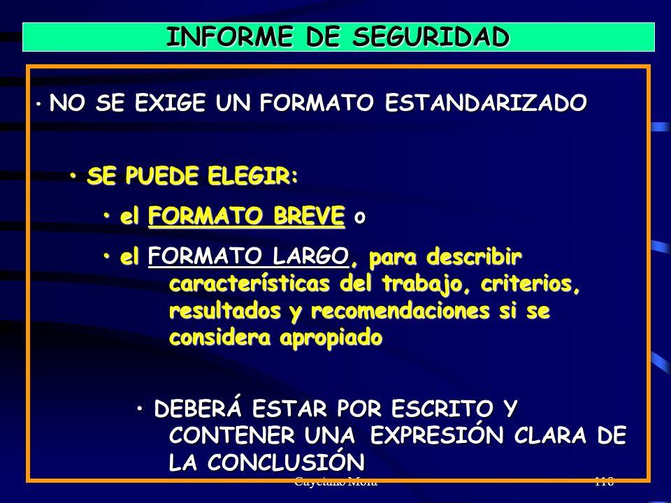 Cayetano Mora118 INFORME DE SEGURIDAD NO SE EXIGE UN FORMATO ESTANDARIZADO NO SE EXIGE UN FORMATO ESTANDARIZADO SE PUEDE ELEGIR: SE PUEDE ELEGIR: el FORMATO BREVE o el FORMATO BREVE o el FORMATO LARGO, para describir características del trabajo, criterios, resultados y recomendaciones si se considera apropiado el FORMATO LARGO, para describir características del trabajo, criterios, resultados y recomendaciones si se considera apropiado DEBERÁ ESTAR POR ESCRITO Y CONTENER UNA EXPRESIÓN CLARA DE LA CONCLUSIÓN DEBERÁ ESTAR POR ESCRITO Y CONTENER UNA EXPRESIÓN CLARA DE LA CONCLUSIÓN