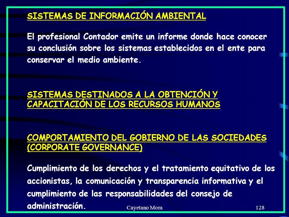 Cayetano Mora128 SISTEMAS DE INFORMACIÓN AMBIENTAL El profesional Contador emite un informe donde hace conocer su conclusión sobre los sistemas establecidos en el ente para conservar el medio ambiente.