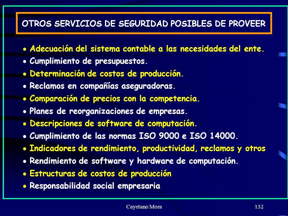 Cayetano Mora132 OTROS SERVICIOS DE SEGURIDAD POSIBLES DE PROVEER Adecuación del sistema contable a las necesidades del ente.